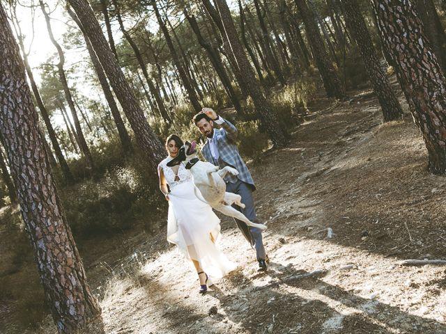 La boda de Yesenia y Mario en Chinchon, Madrid 34