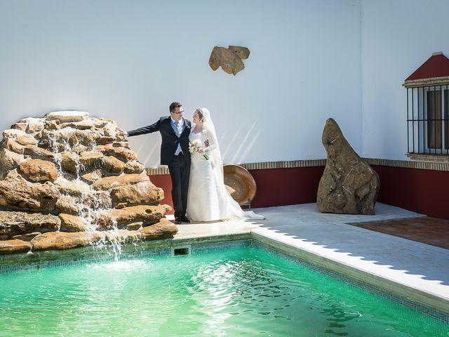 La boda de Enrique y Elizabeth en Montoro, Córdoba 43