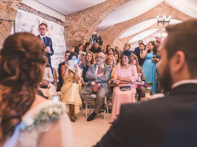 La boda de David  y Rebeca  en Cáceres, Cáceres 27