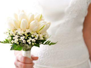 La boda de Erika y Nicolás 2