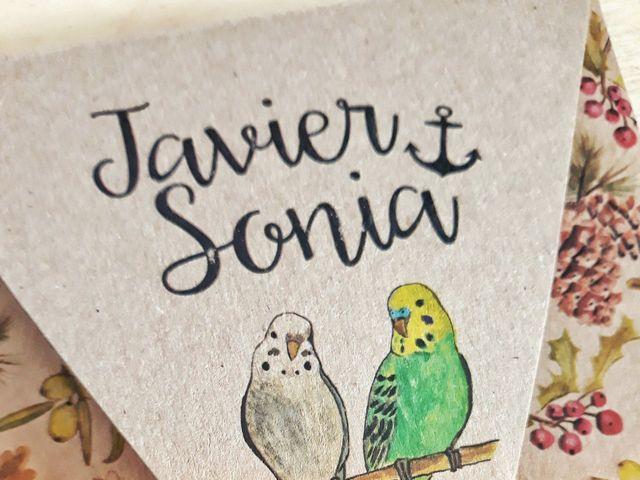 La boda de Javi y Sonia en Ciudad Real, Ciudad Real 28