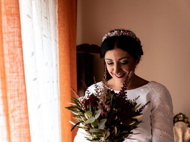 La boda de Dani y Tania en Picon, Ciudad Real 14