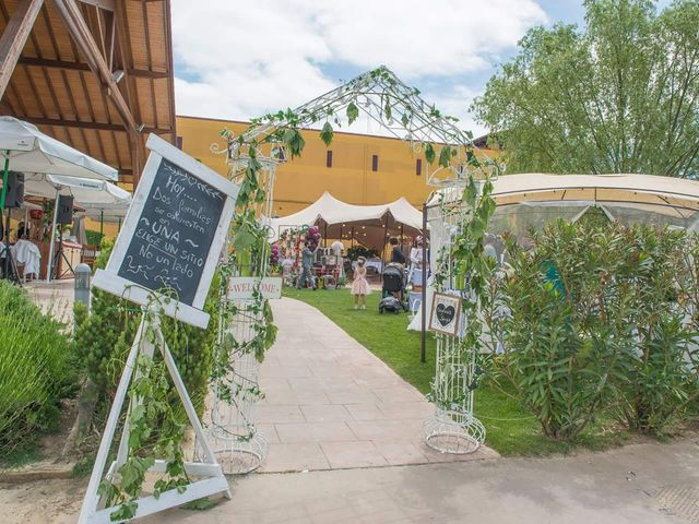 La boda de Sergio y Davinia en Laguardia, Álava 7