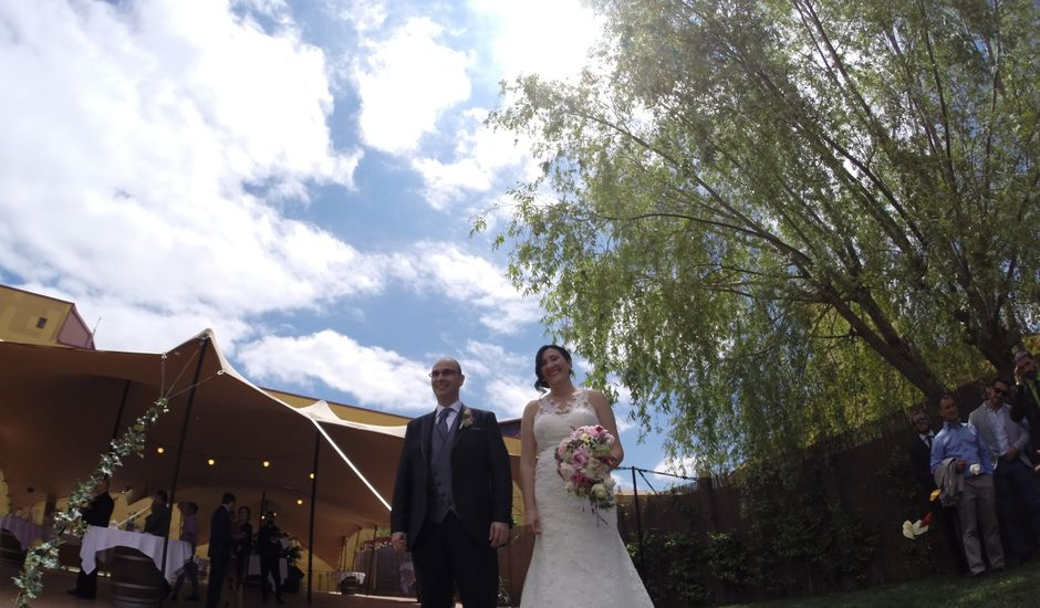 La boda de Sergio y Davinia en Laguardia, Álava