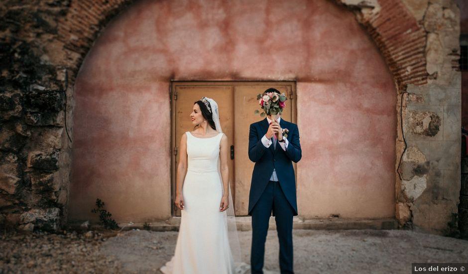 La boda de Javi y Raquel en Guadalajara, Guadalajara