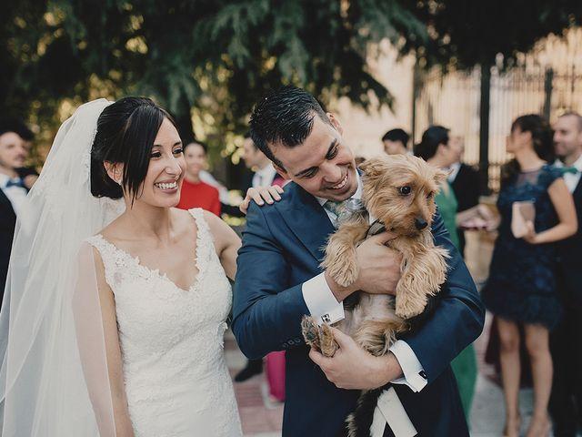La boda de Sergio y Maria en Ciudad Real, Ciudad Real 21