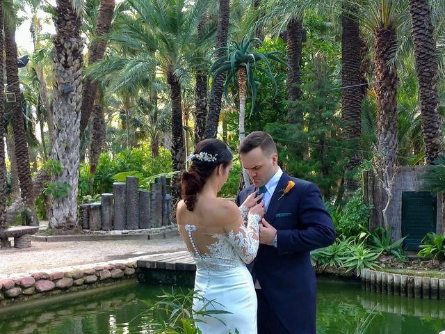 La boda de Alejandro y Estefania en Elx/elche, Alicante 9