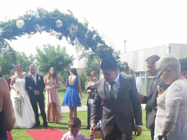 La boda de David  y Natalia  en Calahorra, La Rioja 20