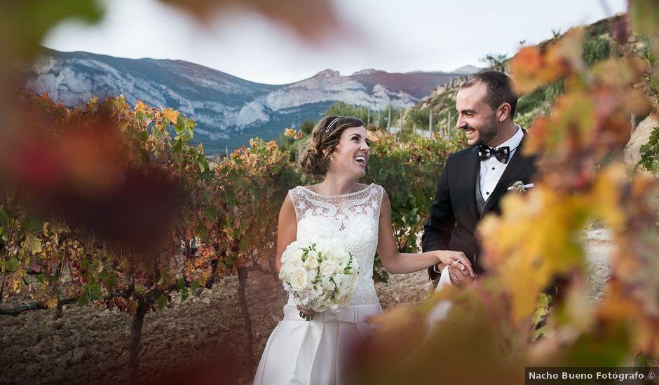 La boda de David y Noelia en Paganos, Álava