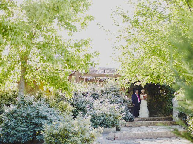 La boda de Javier y Rocío en Navalagamella, Madrid 15