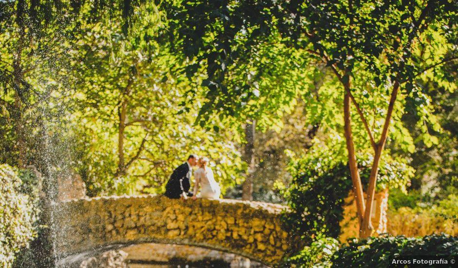 La boda de Jorge y Lidia en Piedrabuena, Ciudad Real