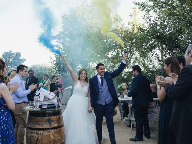 La boda de Javier y Susana en Aranjuez, Madrid 35