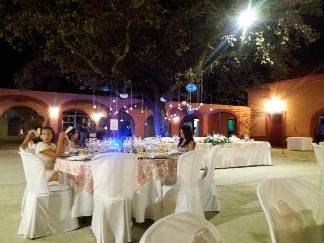 La boda de Javi   y Sara   en Plasencia, Cáceres 4
