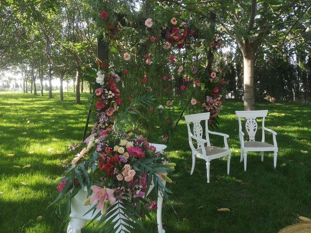 La boda de Ismael y M.Carmen en Ribarroja del Turia, Valencia 14
