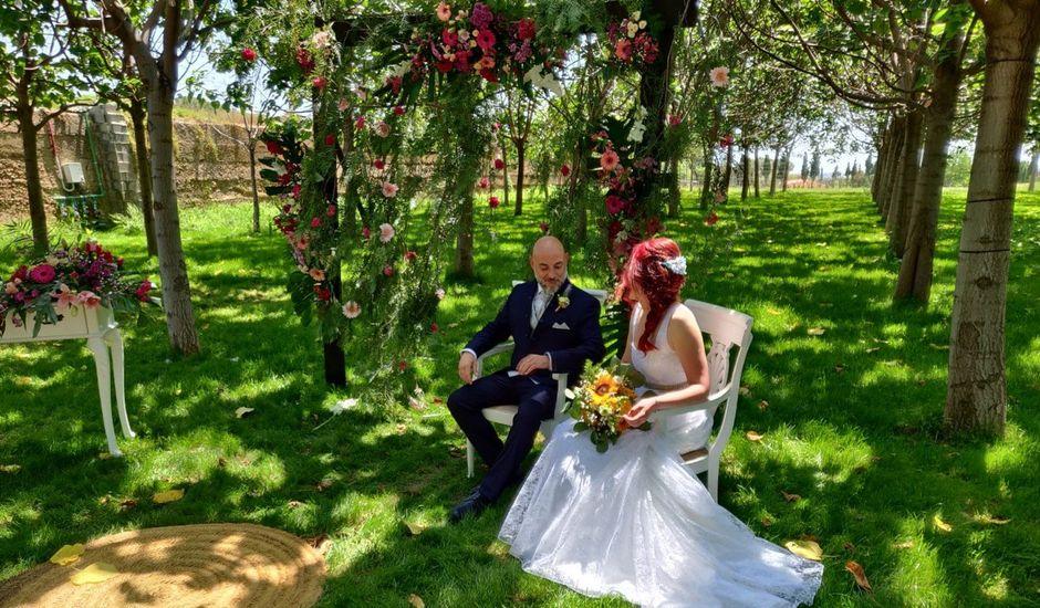 La boda de Ismael y M.Carmen en Ribarroja del Turia, Valencia