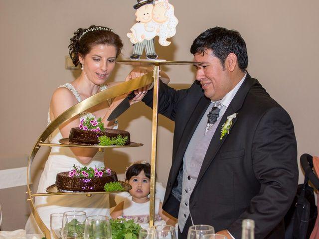 La boda de Chema y Blanca en Siones, Burgos 17
