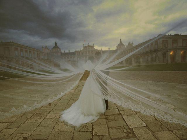 La boda de Sergio y Beatriz en Aranjuez, Madrid 11