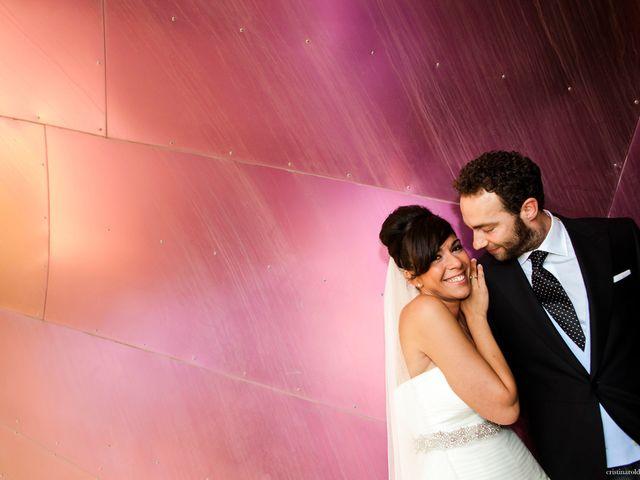 La boda de Jose Ángel y Diana en Elciego, Álava 15