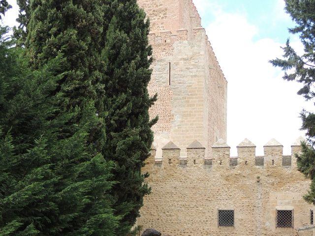La boda de Javier y Amparo en Ciudad Rodrigo, Salamanca 4