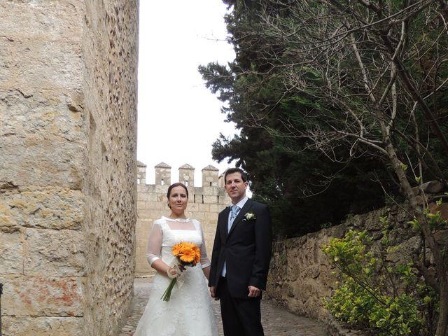 La boda de Javier y Amparo en Ciudad Rodrigo, Salamanca 5