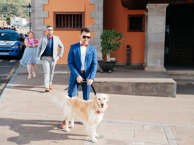 La boda de Jose y Cathy en Tegueste, Santa Cruz de Tenerife 39