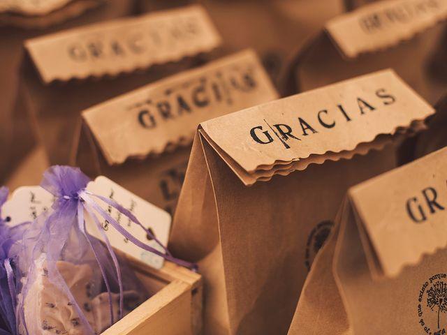 La boda de Luis y Laura en Granada, Granada 2