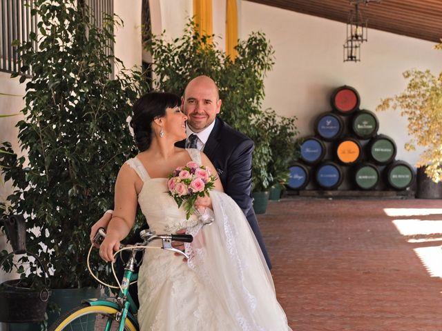 La boda de Luis y Magdalena en Guadalcacin, Cádiz 15