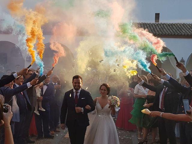 La boda de Noelia y Alejandro en Tomares, Sevilla 1