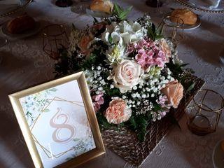 La boda de Céline y Fran 2