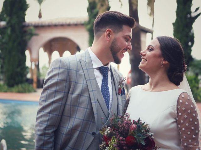 La boda de Adrián y Sandra en Alhaurin El Grande, Málaga 17