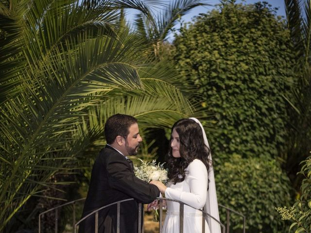 La boda de Sergio y Milena en Alcalá De Henares, Madrid 29