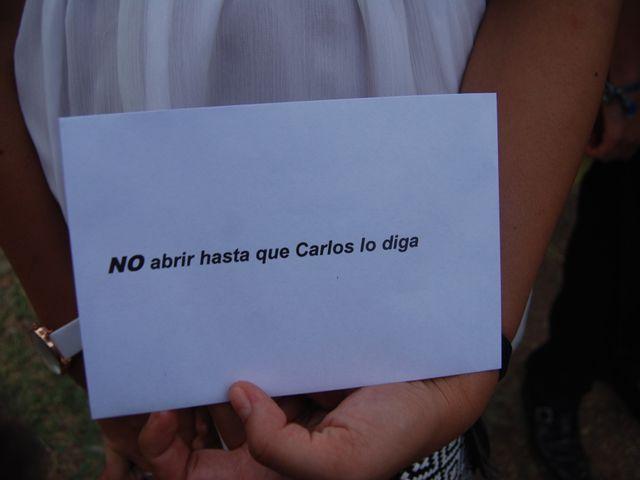 La boda de Carlos  y Andrea  en Serradilla, Cáceres 20