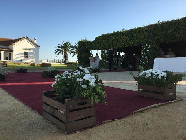 La boda de Toni  y Marina en Jerez De La Frontera, Cádiz 3