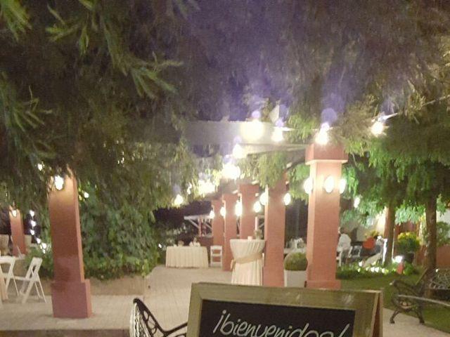 La boda de Pablo y Tamara  en Villagonzalo, Badajoz 39