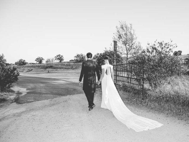 La boda de Pablo y Tamara  en Villagonzalo, Badajoz 41