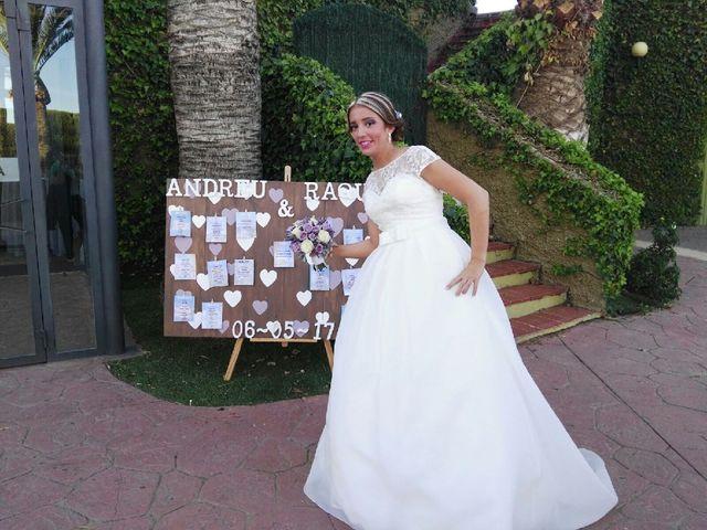 La boda de Andreu y Raquel en L' Alcúdia, Valencia 6
