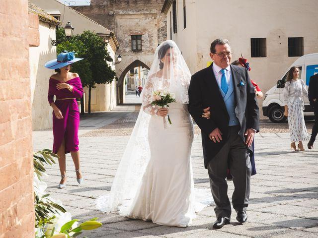 La boda de Ana Belén y Roberto en Palma Del Rio, Córdoba 33