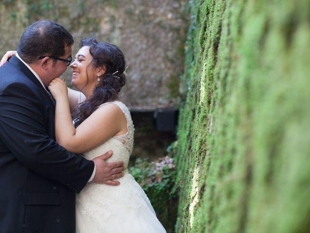 La boda de David y Sonia en Castejon, Navarra 22