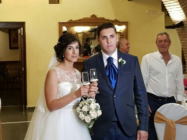 La boda de Gerard y Carolina  en Alcudia De Guadix, Granada 6