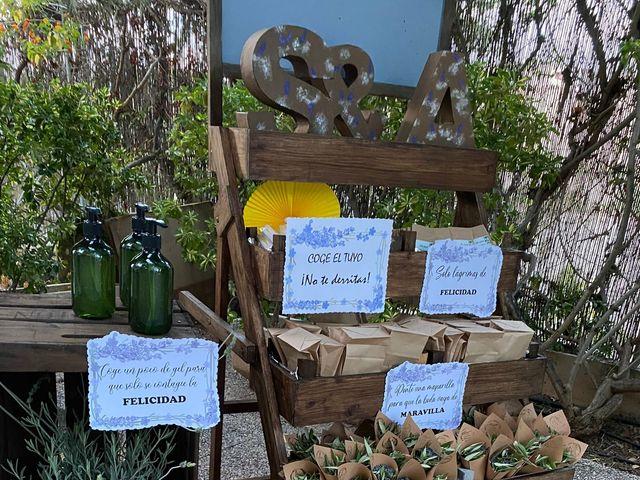 La boda de Álex  y Sarama en Novelda, Alicante 12