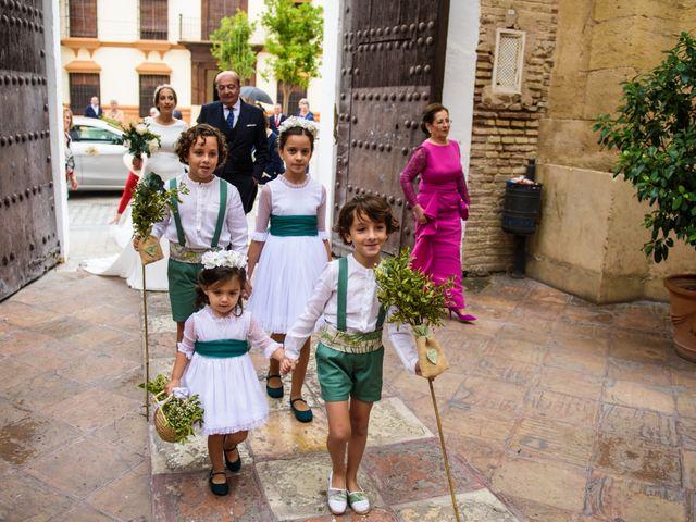 La boda de José Antonio y Carmen en Fuente Palmera, Córdoba 10