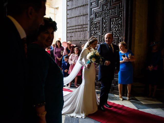 La boda de José Antonio y Carmen en Fuente Palmera, Córdoba 11