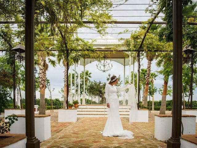 La boda de José Antonio y Carmen en Fuente Palmera, Córdoba 18