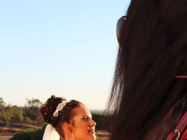 La boda de Carlos  y Jessica  en Villablanca, Huelva 21