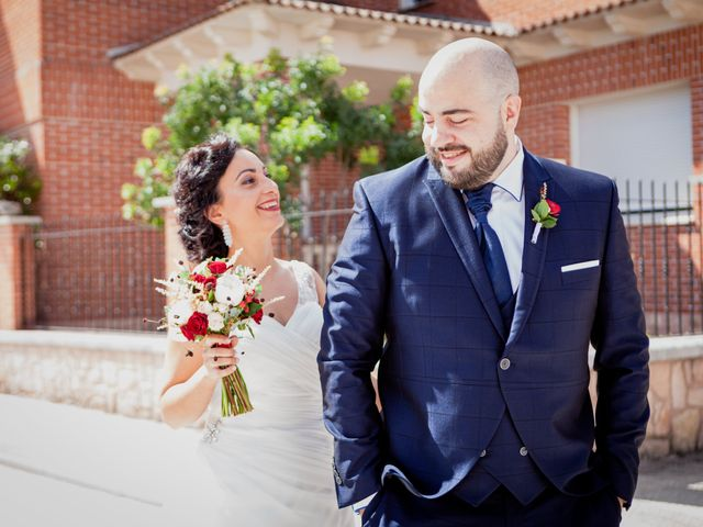La boda de Diego y Laura en Coca, Segovia 17