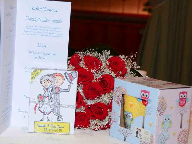 La boda de Samuel y Ana en Alameda De La Sagra, Toledo 11