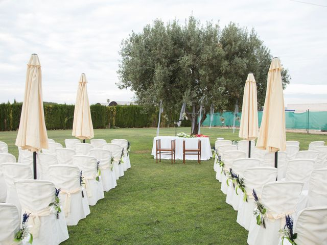 La boda de Álvaro  y Rosa  en Catarroja, Valencia 2