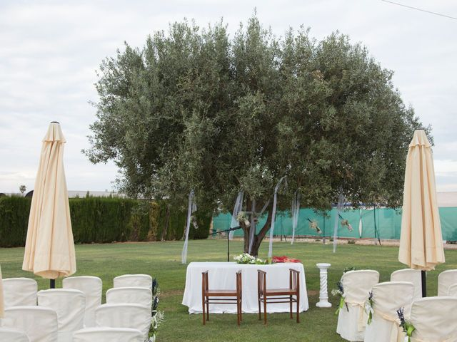 La boda de Álvaro  y Rosa  en Catarroja, Valencia 6