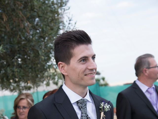 La boda de Álvaro  y Rosa  en Catarroja, Valencia 7
