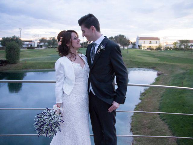 La boda de Álvaro  y Rosa  en Catarroja, Valencia 13